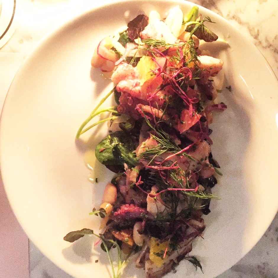Exmouth Market Grind - Octopus