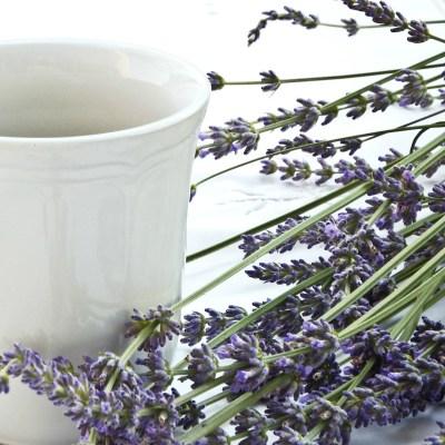 shop essential oils doterra dotexanoils sotexanblog
