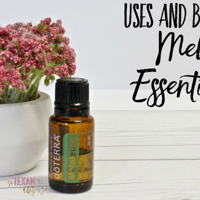Melaleuca Essential Oil Uses and Benefits