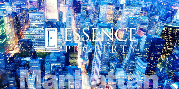 Essence Properties
