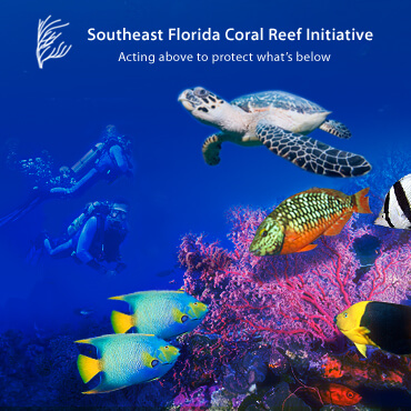 SE Florida Coral Reef Initiative
