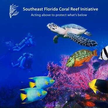 SE Florida Coral Reef Initiative