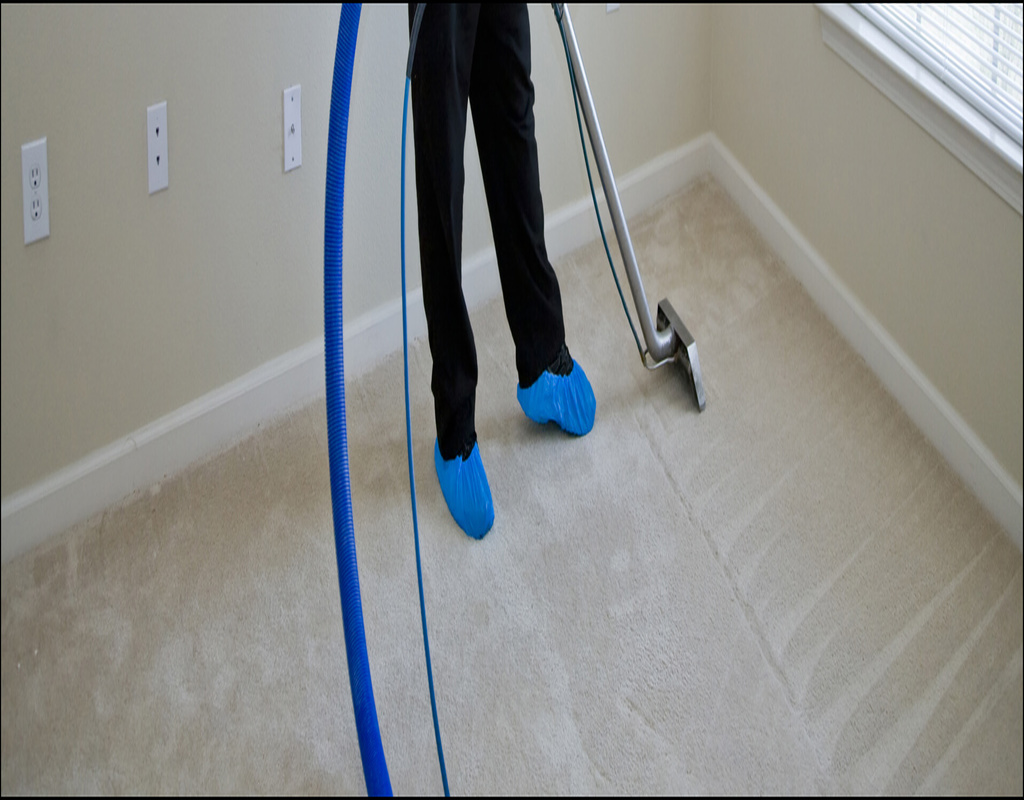 Carpet Cleaners In Appleton Wi