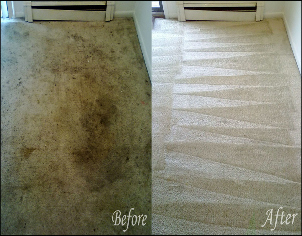 Carpet Cleaning Erie Pa