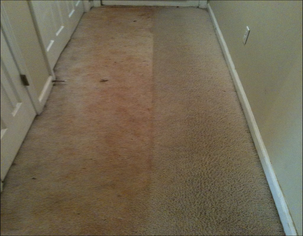 Carpet Cleaning Katy Tx Reviews