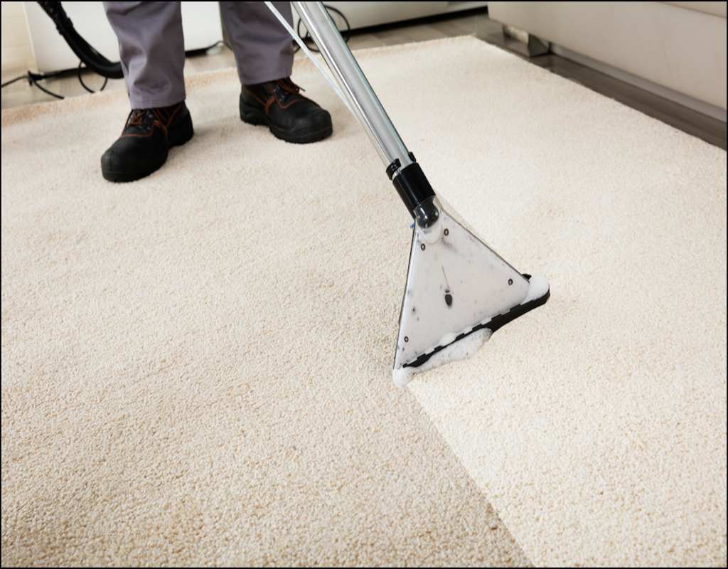 Carpet Cleaning Savannah Ga