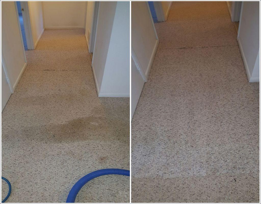 Carpet Cleaning Woodbridge Va