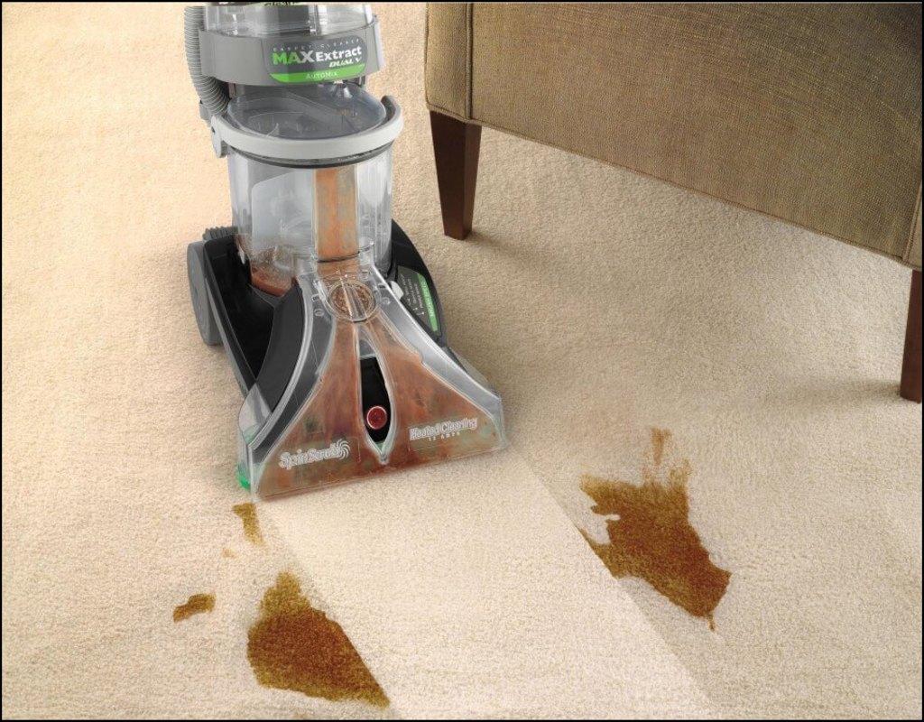 Best Carpet Cleaning Machine For Pet Urine