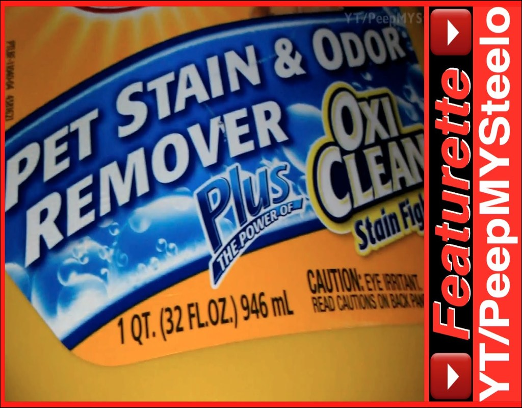Best Carpet Shampoo For Pets