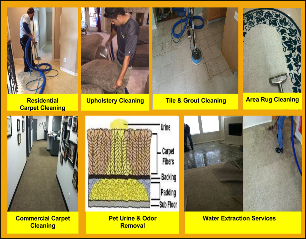 Busy Bee Carpet Cleaning