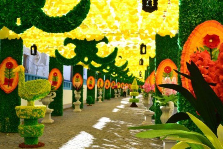 Ruas floridas de Redondo