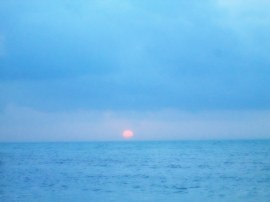 Sunrise_Patty