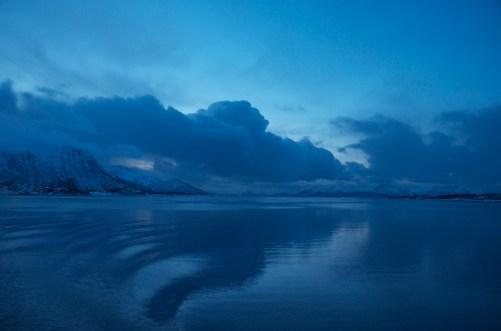 Near Stokmarknes, Norway. January 2013.