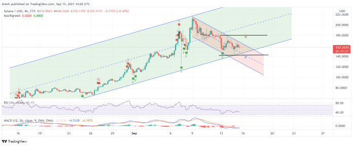 Solana Price Prediction September 2021: SOL Finds Support At $142