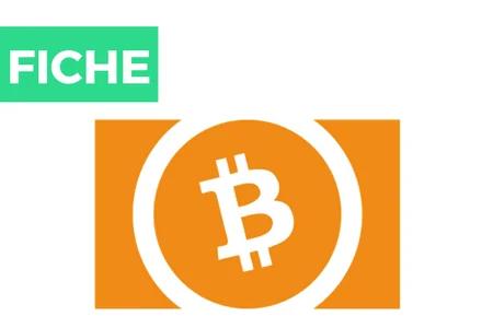 Bitcoin Cash (BCC/BCH)