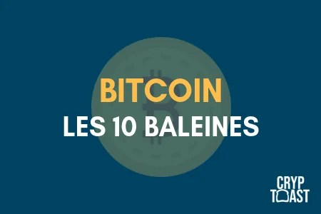 Qui a le plus de Bitcoins ?