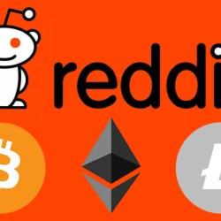 مؤسس Reddit يوضح أن وقت الضجيج قد إنتهي للعملات المشفره