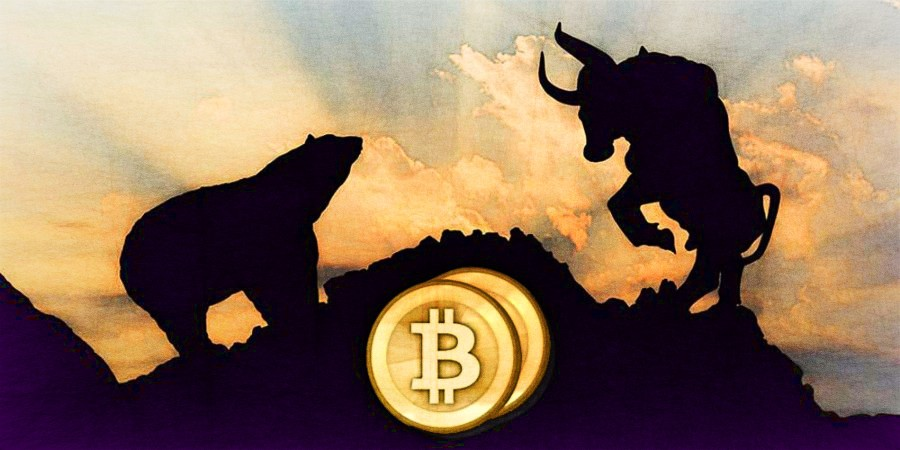 bitcoin bear hunting