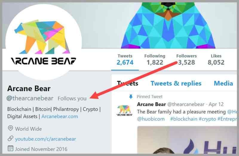 Arcane Bear Follows Tai Zen