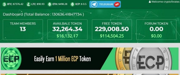 Ethereumcashpro ICP Tokens
