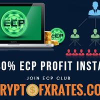 get 40% profit instantly ECP-club