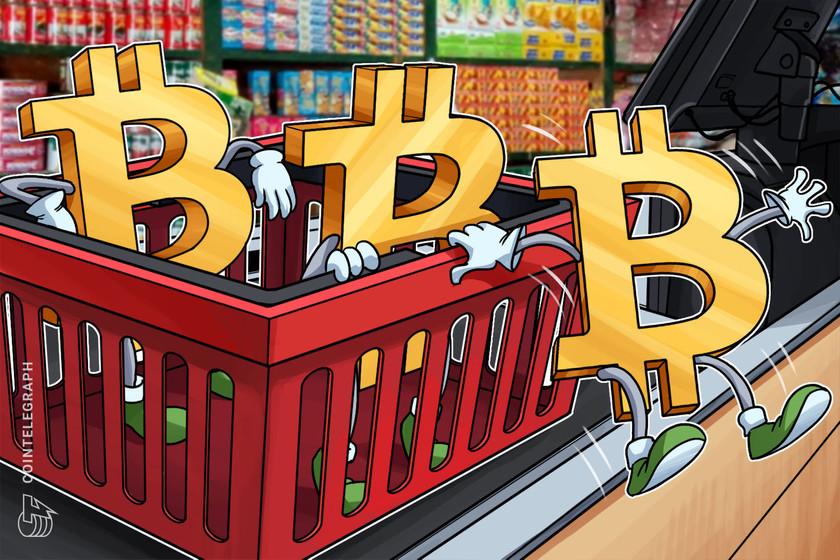 Mercati, il Bitcoin accusa la concorrenza delle altre criptovalute - liceo-orazio.it