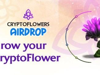 CryptoFlowers Airdrop Tutorial - Earn Up 0.1 To 50 ETH