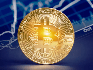 The Rising Bitcoin Dominance Index