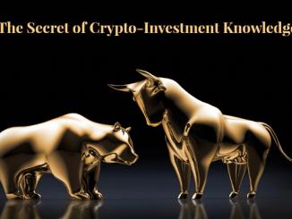 BULLnBEAR Investment Platform Review