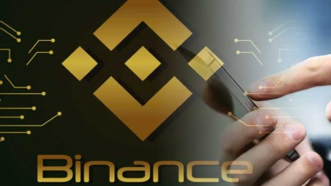 Crypto Investment Strategy Of Institutional Players On Binance Exchange