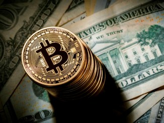 Bitcoin Will Outperform The S&P 500 Next Year - According The Chainalysis Survey