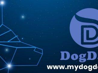 DogData Airdrop ETHBN Token - Receive 29 ETHBN Tokens Free