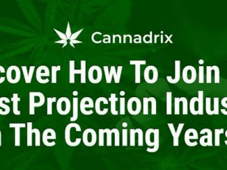 Cannadrix Airdrop - Get $116 Of CND Tokens Free