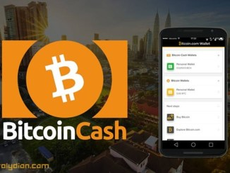 Bitcoin Cash Likely to Embrace Privacy Features Soon