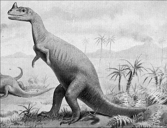Mokele Mbembe Dinosaur