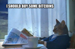 """I should buy some bitcoins"" cat"
