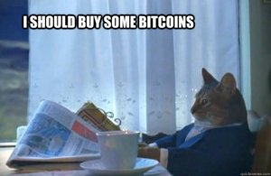 """I should buy some bitcoins"" cat"