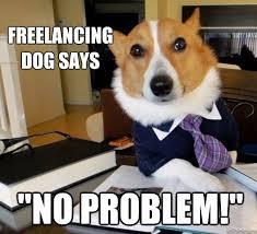 freelancing dog