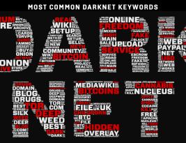 Как искать данные в Даркнете