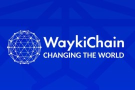 What is WaykiChain