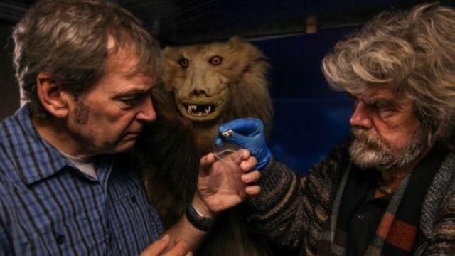 """Le prétendu """"yéti"""" du musée de Reinhold Messner : un ours, de toute évidence !"""