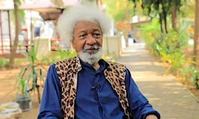 IPOB: Wole Soyinka Breaks Silence On Re-Arrest Of Nnamdi Kanu -Crystal News