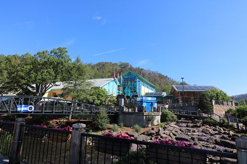 Ripleys Aquarium of the Smokies TN