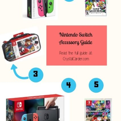 Nintendo switch accessory guide for christmas