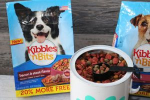 DIY Dry Food Pet Storage Container with Kibbles 'N Bits® Savings