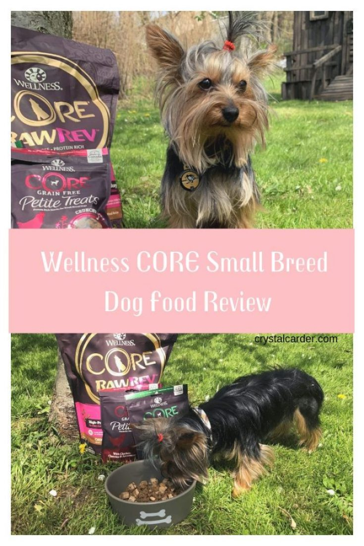 Teddy love Wellness CORE Small Breed Pet Food