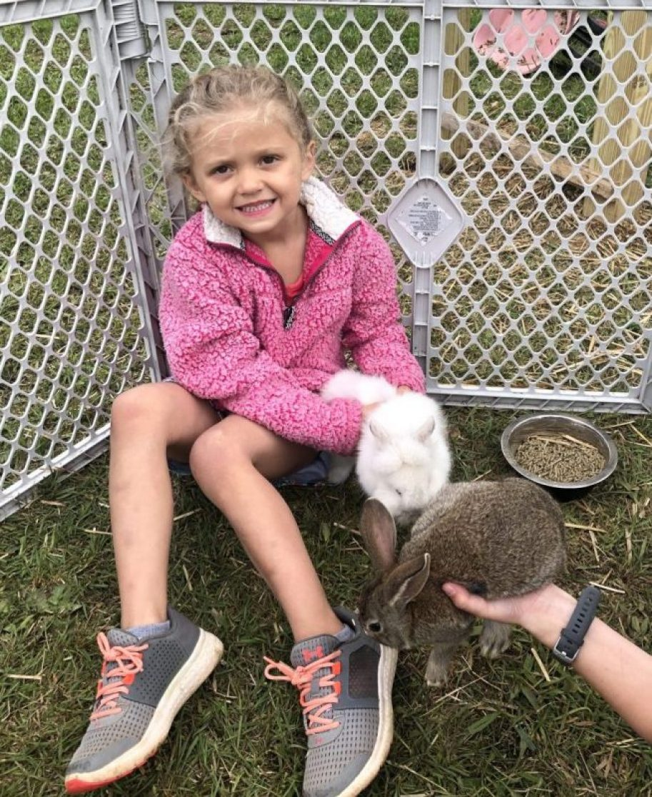 Everything You Should Know Before Getting Your Kids Pet Rabbits 74