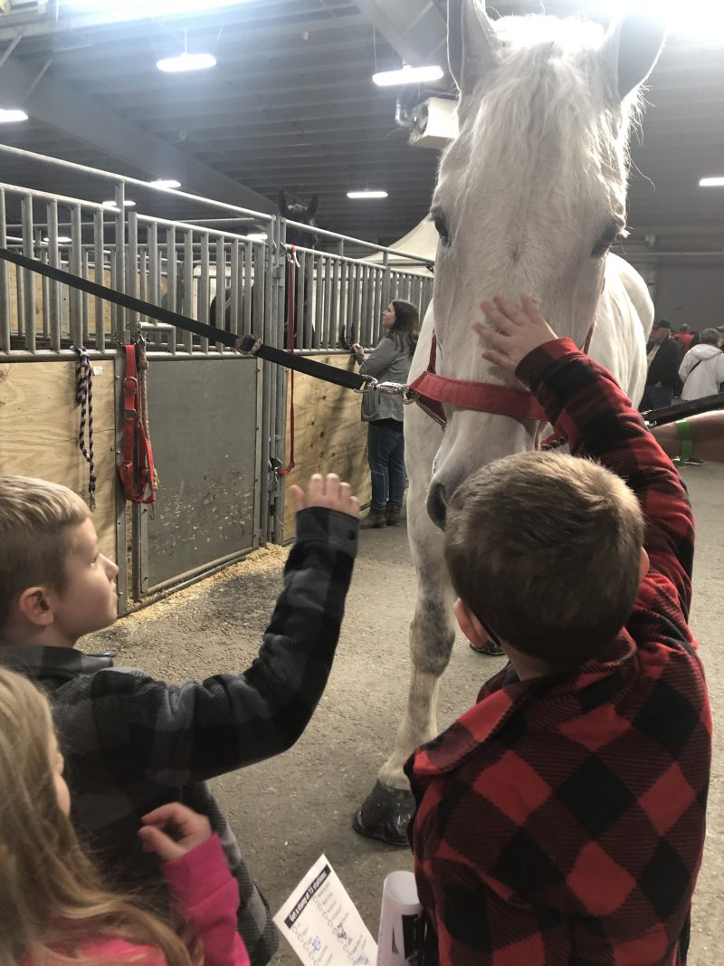 Family Fun at the Pennsylvania Farm Show 2020 76