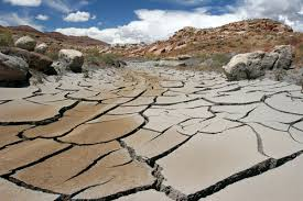 Arizona drought conditions improving