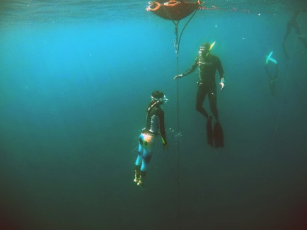 Freediving safety in the ocean